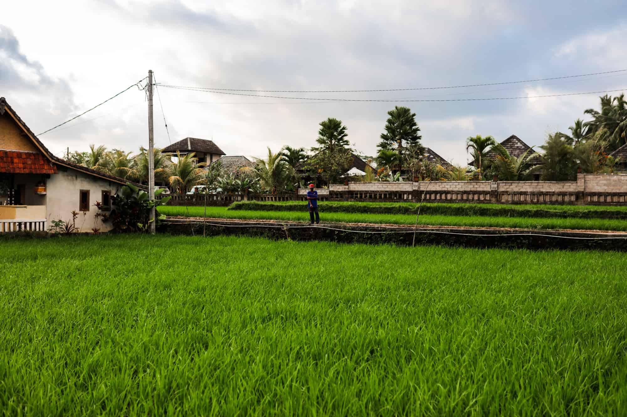 Sylt Fotograf Sylt Heiraten auf Sylt Hochzeitsfotograf Sylt Bali